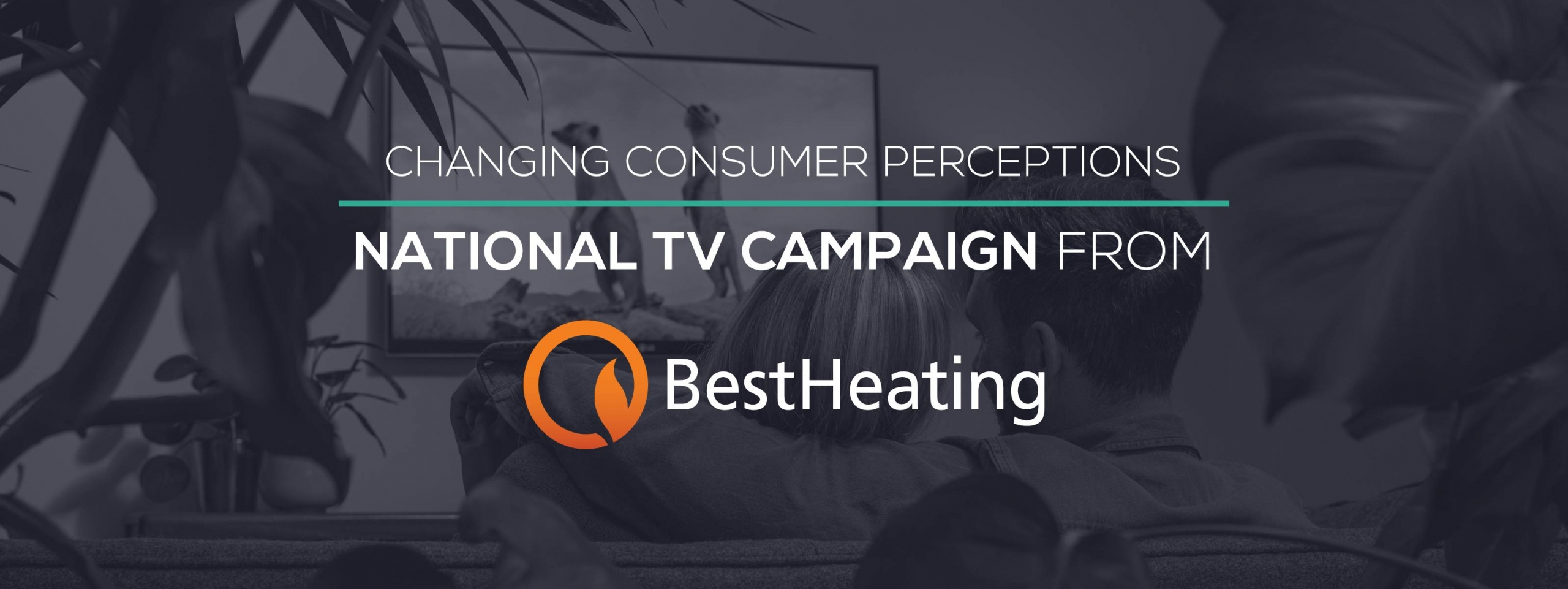 consumer perceptions blog header